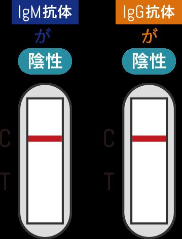 IgM抗体が陰性、IgG抗体が陰性